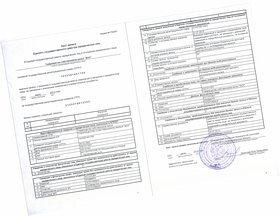Выписка из ЕГРЮЛ через сервис 1С-Отчетность